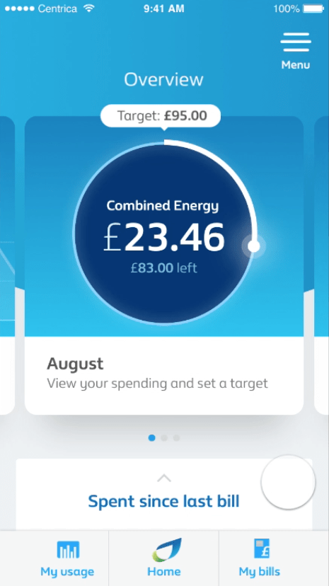 British Gas Overview